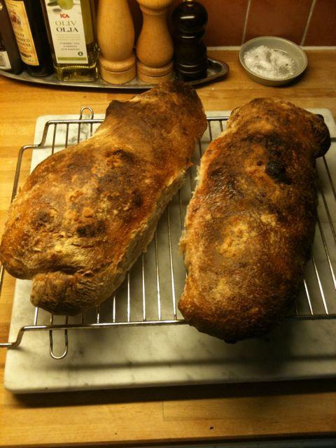 Dagens bröd